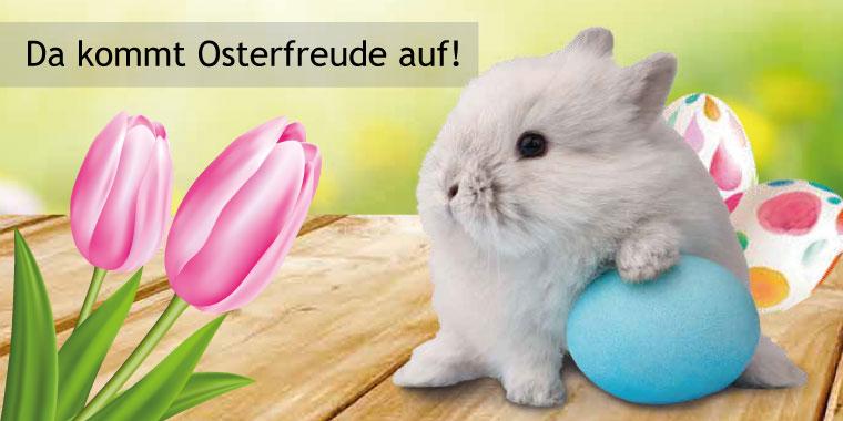 Angebote für Ostern