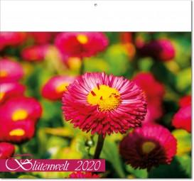 Bildkalender Blütenwelt