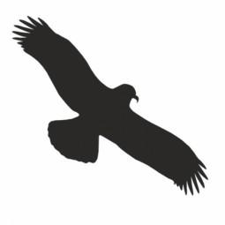 Aufkleber Vogel einzeln 475 x 175 mm